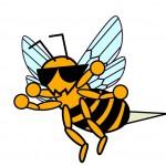 アナフィラキシーショックが起こる蜂の種類は?短時間で症状が!?