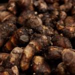 里芋の簡単皮むき方法!電子レンジでかゆみを防いで楽チンに!