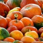 かぼちゃの種類!おいしいもの、ミニ・ひょうたん型の名前は?