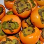 柿1個のカロリーや栄養、糖分は?ダイエット効果の高い効能が!