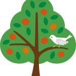 心理テスト!鳥から果物をどう守るかで分かる、あなたのリスク管理