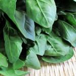 ほうれん草の栄養や効能!効率よく摂取する調理方法は?