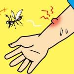 ブヨに刺された時の症状と治療!対策にはハッカが効果的!?