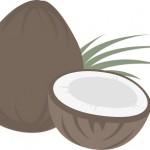 ココナッツミルクは太る?カロリーや栄養・効能にダイエット効果は?