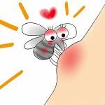 蚊によるかゆみや腫れの原因は?痒くなる時間で対策や塗り薬は違う!?