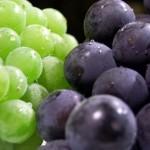 ぶどうダイエットの効果は?カロリーや栄養、干しぶどうでは?