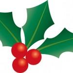 クリスマスの赤い実や葉の名前は?リースなど飾りに使う意味は?