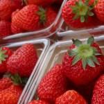 いちごの賞味期限!冷凍で日持ちする?種類や品種はどれくらい?