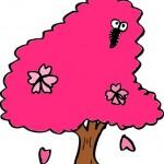桜の葉につく害虫や盆栽の桜につく貝殻虫の駆除方法や対策!