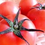 トマト鍋におすすめな具材や作り方!気になるカロリーやしめは?