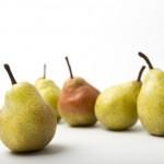 洋梨の栄養や効能、カロリーは?りんごや柿と比較すると?