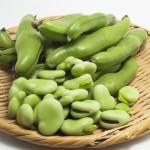 そら豆はダイエット向き?太る?カロリーや糖質から見る食べ方は?