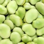 そら豆の食べ過ぎはアレルギーに!?食べ方や茹で時間は?