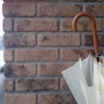 傘のカビが!取り方やカビ臭い時の除去方法のポイント