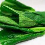 小松菜の食べ過ぎはアレルギーに!?下痢や頭痛の症状が??