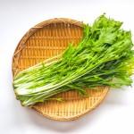 水菜に白や黒い虫、卵がついてる!洗い方や駆除方法は?
