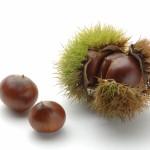 栗が変色する原因!栗ご飯で変色を防ぐ5つの対処法!