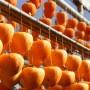 柿の渋抜き方法!ドライアイスや冷凍でも簡単にデキるポイント!