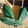 びわの葉エキスの効能には驚きの効果が!?作り方や使い方は?